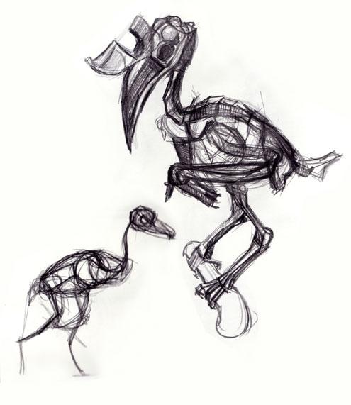 Toucan Skeleton